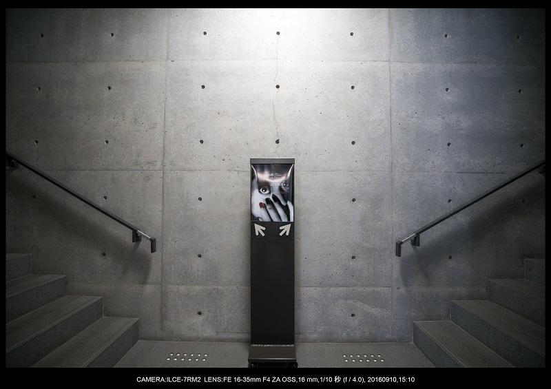 20160910_兵庫県立美術館21.jpg