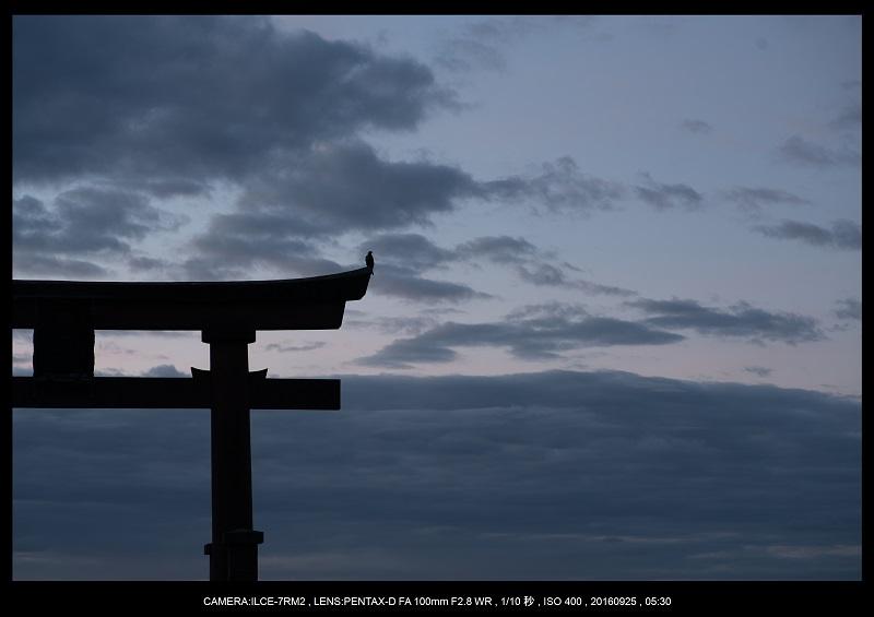 20160925白髭神社夜景朝景5.jpg