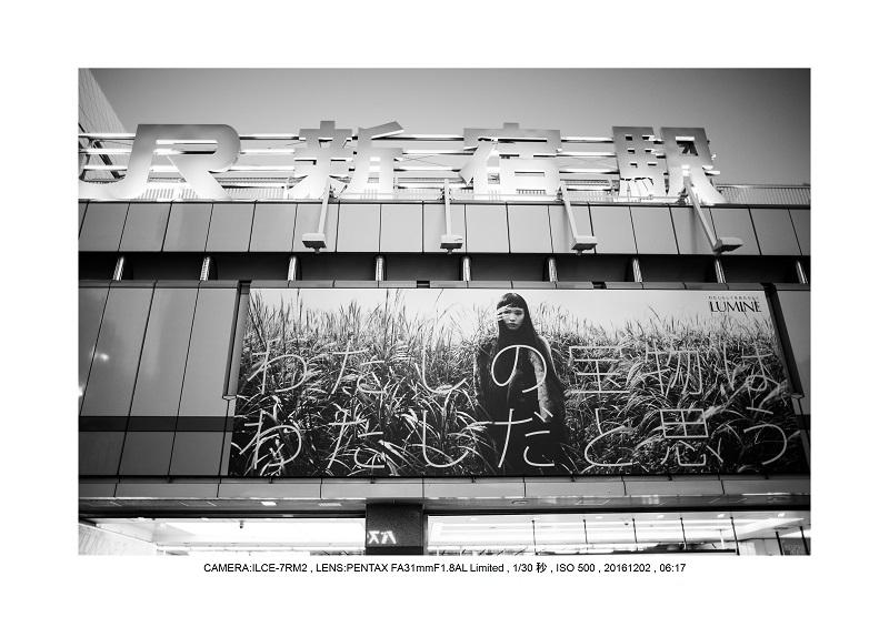 20161202神宮外苑 銀杏並木 絶景 見頃3.jpg