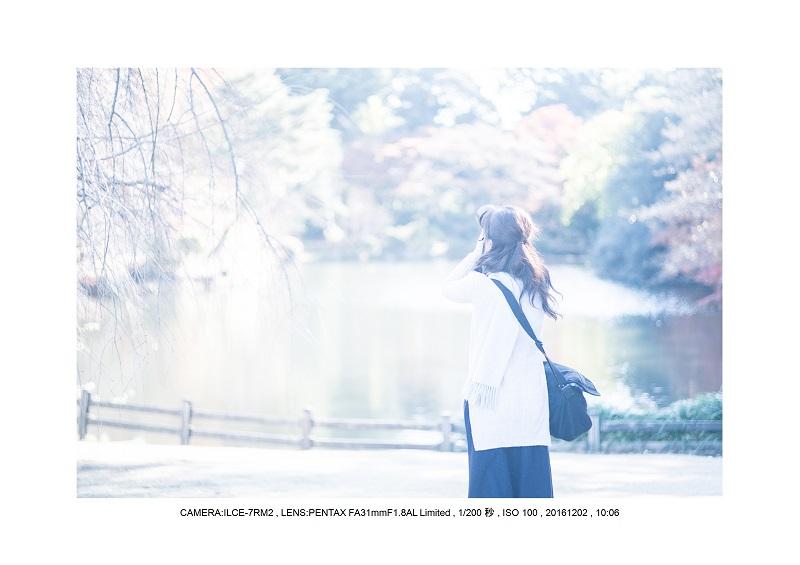 20161202神宮外苑 銀杏並木 絶景 見頃49.jpg