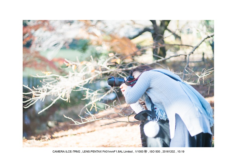 20161202神宮外苑 銀杏並木 絶景 見頃51.jpg