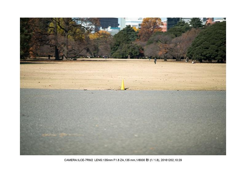 20161202神宮外苑 銀杏並木 絶景 見頃55.jpg