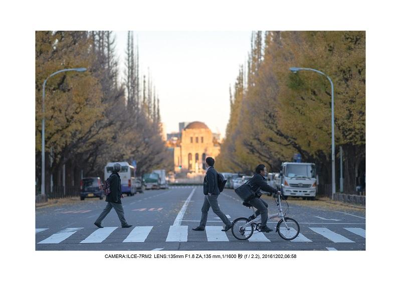 20161202神宮外苑 銀杏並木 絶景 見頃6.jpg