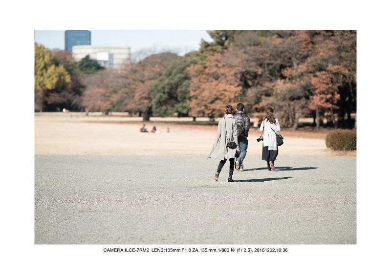 20161202神宮外苑 銀杏並木 絶景 見頃61.jpg