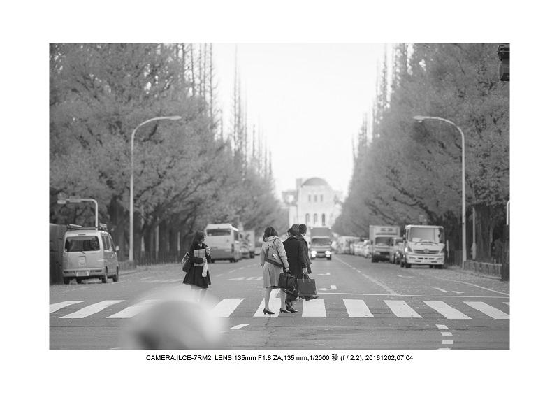 20161202神宮外苑 銀杏並木 絶景 見頃7.jpg
