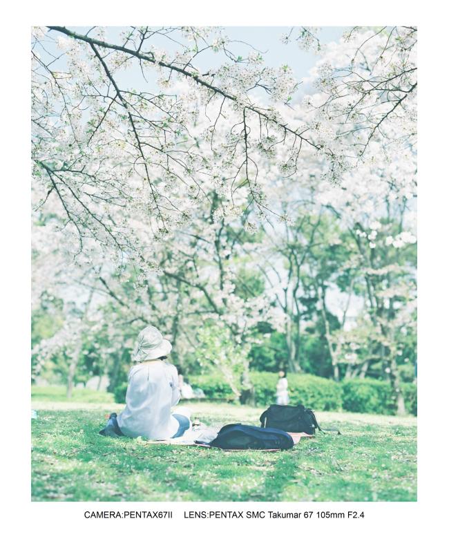 2018桜日和な長居植物園0.jpg