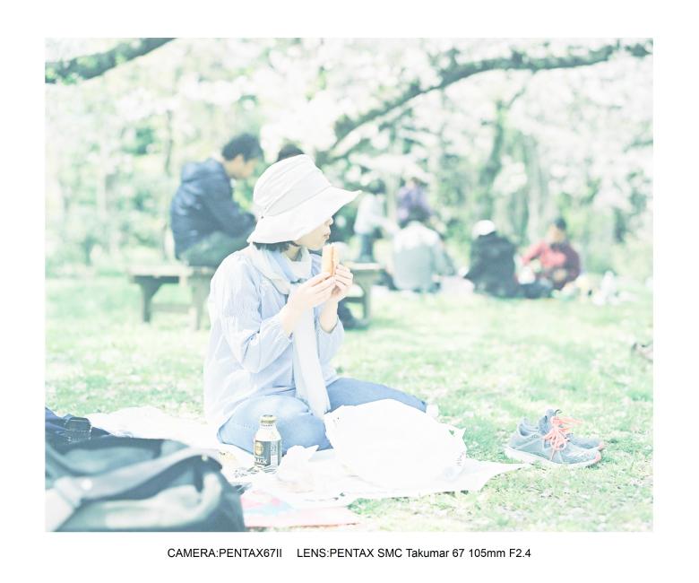 2018桜日和な長居植物園1.jpg