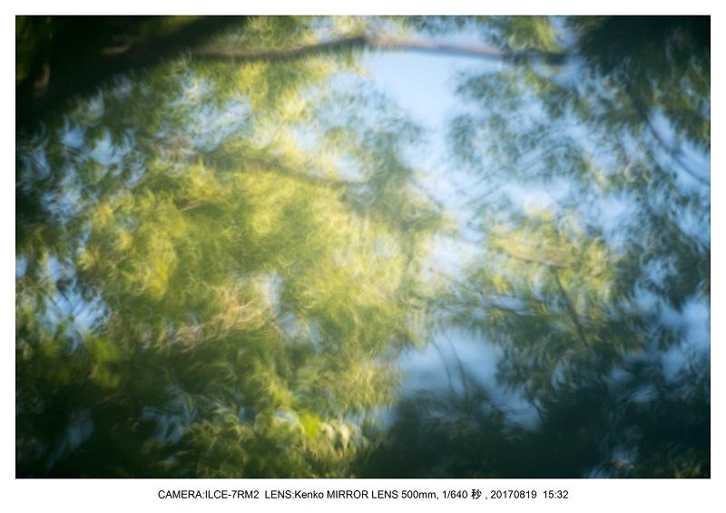 3Kenko Mirror Lens 500mm 作例_4.jpg