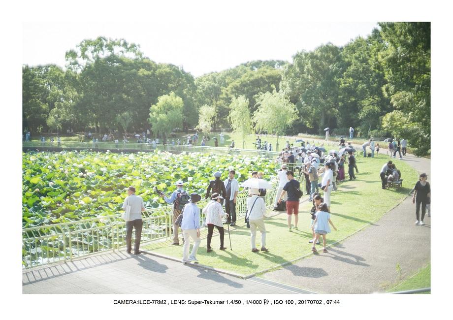 オールドレンズ散歩1(アトムトリウムレンズSuper-Takumar 50mmF1.4).jpg