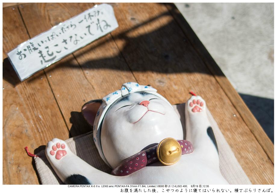 伊勢・志摩・鳥羽・英虞湾・伊勢神宮・観光画像27.jpg