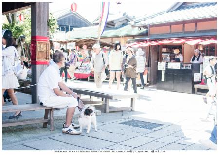 伊勢・志摩・鳥羽・英虞湾・伊勢神宮・観光画像34.jpg