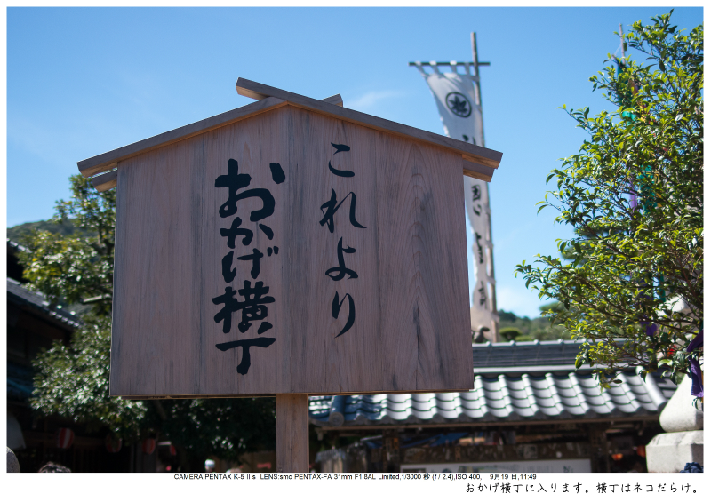 伊勢・志摩・鳥羽・英虞湾・伊勢神宮・観光画像35.jpg