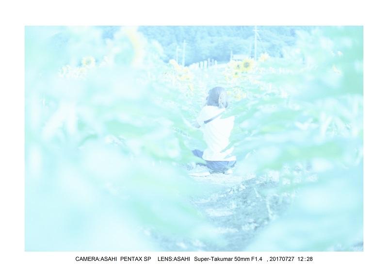 佐用町ひまわりとはりま天文台の星(Pentacon AV でバブルボケ)12-0.jpg