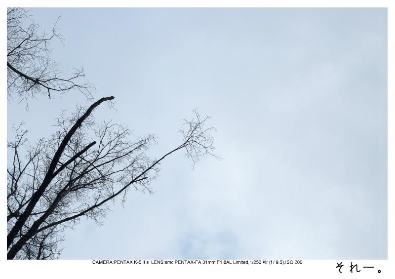 冬の軽井沢12.jpg