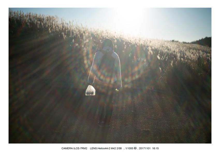和歌山_風景_生石高原(オールドレンズ_関西_インダスター50-2 Industar 50mm M42)5.jpg