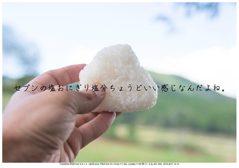 大阪・とよのコスモスの里17.jpg