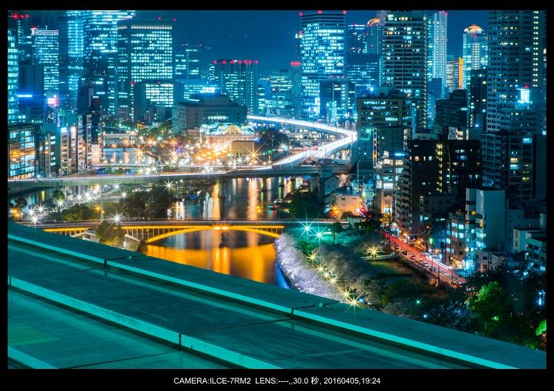大阪・天満橋の桜夜景_10.jpg