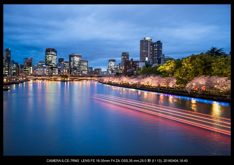 大阪・天満橋の桜夜景_15.jpg