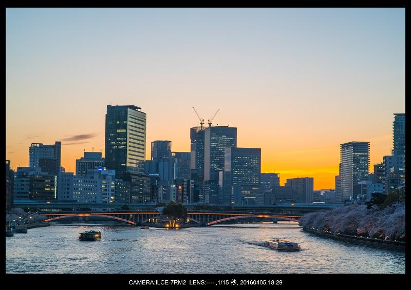 大阪・天満橋の桜夜景_5.jpg
