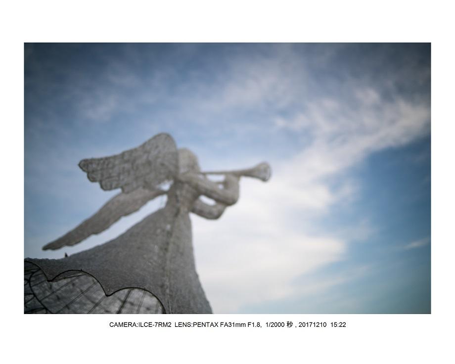 大阪・長居植物園・冬枯れの日9.jpg