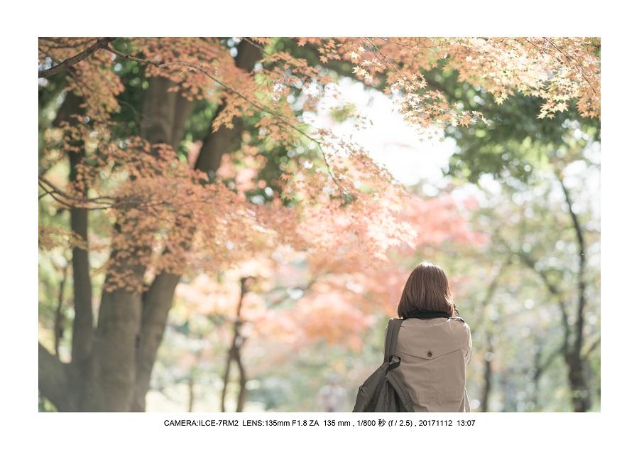大阪・長居植物園紅葉見頃00.jpg