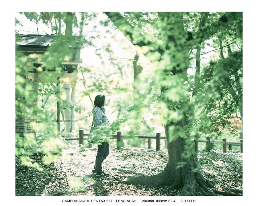 大阪・長居植物園紅葉見頃ASAHI PENTAX 6×7 100mF2.4_0.jpg