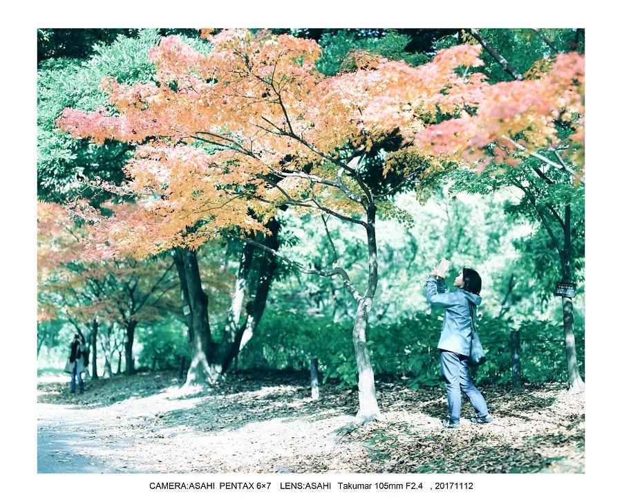 大阪・長居植物園紅葉見頃ASAHI PENTAX 6×7 100mF2.4_1.jpg