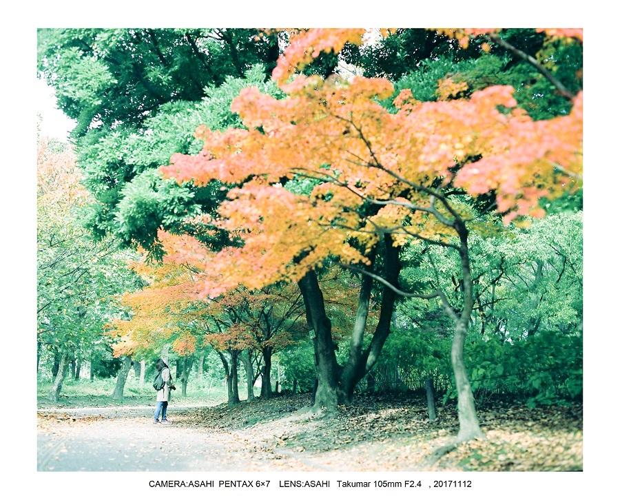 大阪・長居植物園紅葉見頃ASAHI PENTAX 6×7 100mF2.4_3.jpg