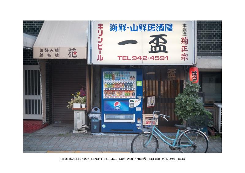 大阪城・梅林散歩25.jpg