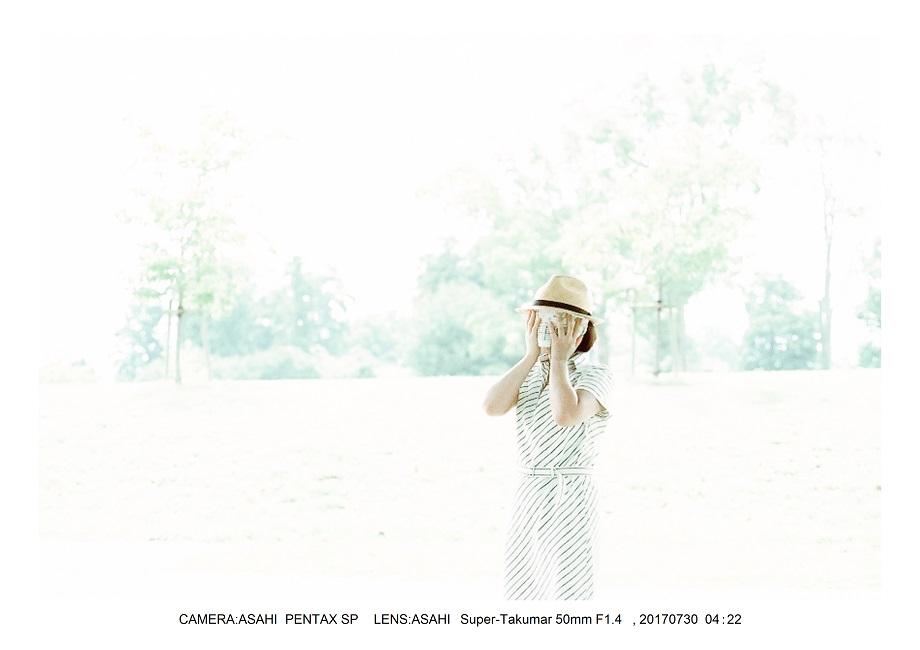 奈良の絶景・馬見丘陵公園向日葵ひまわり見頃0000.jpg