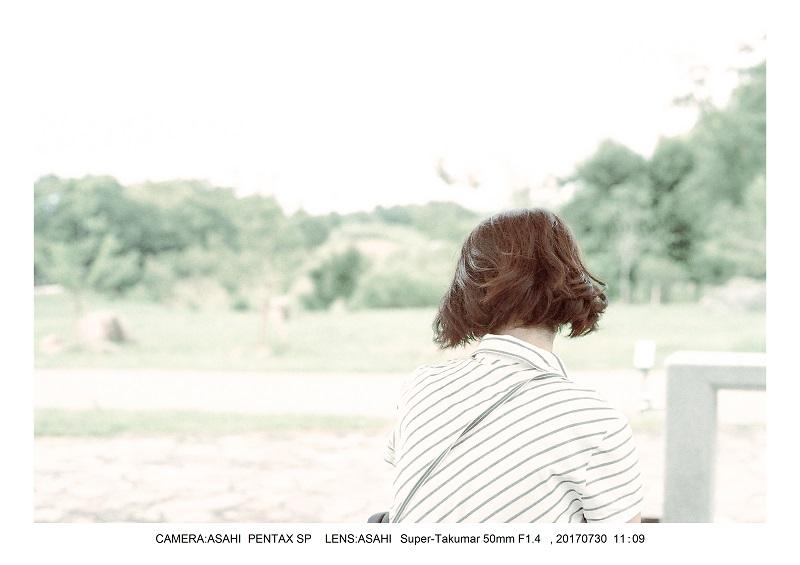 奈良の絶景・馬見丘陵公園向日葵ひまわり見頃3-000.jpg