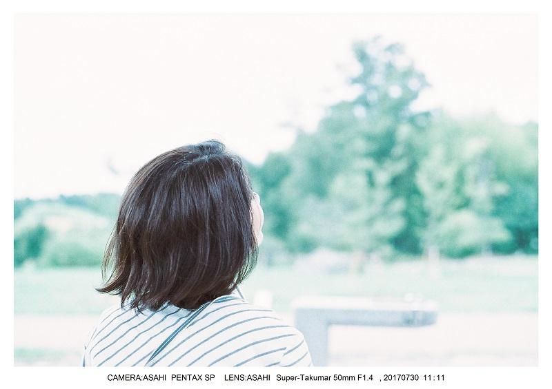 奈良の絶景・馬見丘陵公園向日葵ひまわり見頃5-1PENTAXSP フィルムカメラ・オールドレンズ.jpg