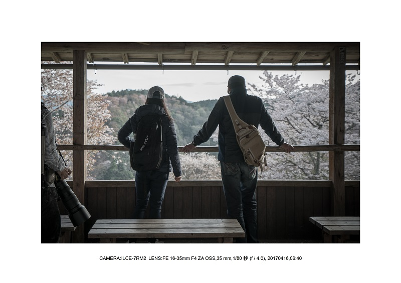 奈良の絶景風景・吉野山の桜見頃満開(下千本・中千本・上千本)旅行記画像21.jpg