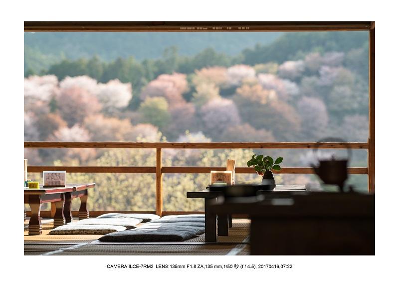 奈良の絶景風景・吉野山の桜見頃満開(下千本・中千本・上千本)旅行記画像42.jpg
