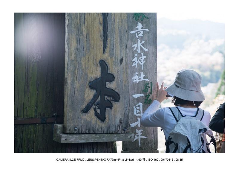 奈良の絶景風景・吉野山の桜見頃満開(下千本・中千本・上千本)旅行記画像54.jpg
