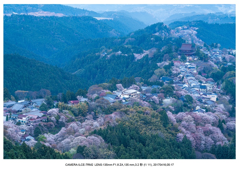 奈良の絶景風景・吉野山の桜見頃満開(下千本・中千本・上千本)旅行記画像6.jpg