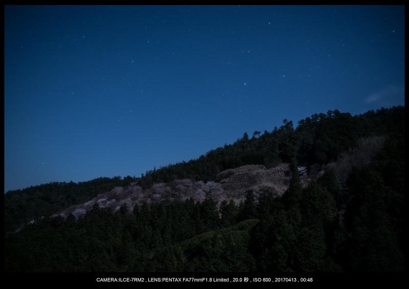 奈良・吉野山の桜さくら見頃満開5.jpg