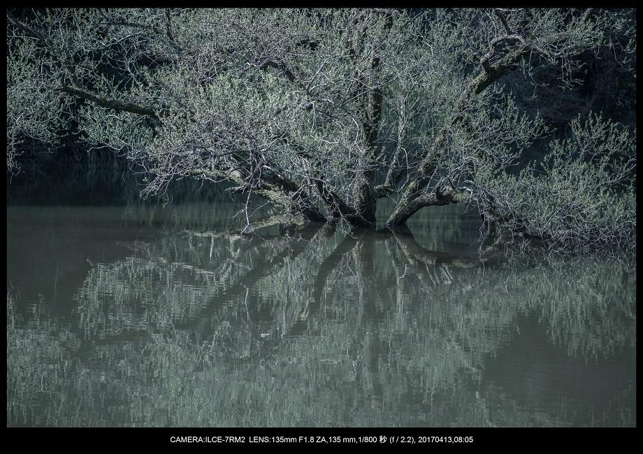 奈良・宇陀の室生湖0.jpg