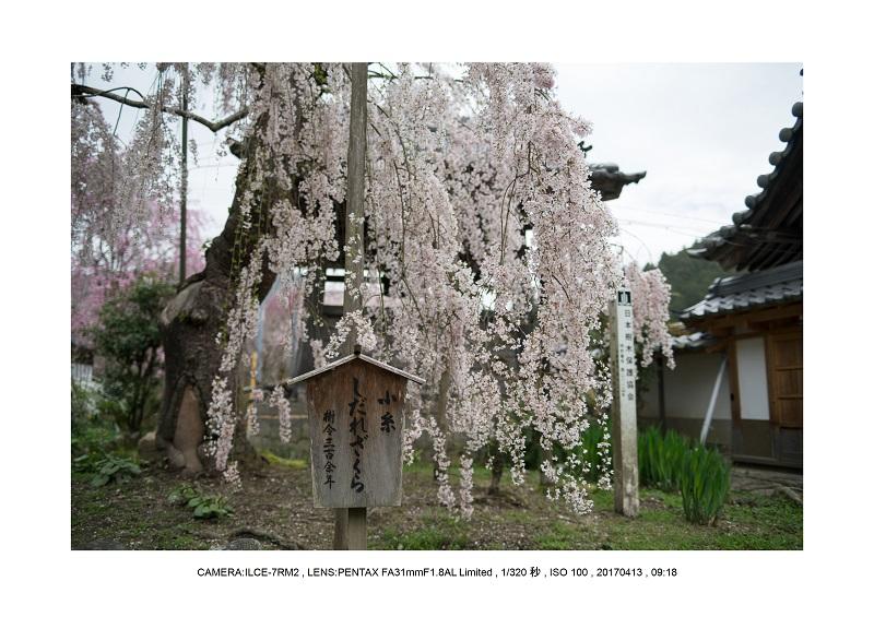 奈良・宇陀の室生湖11.jpg