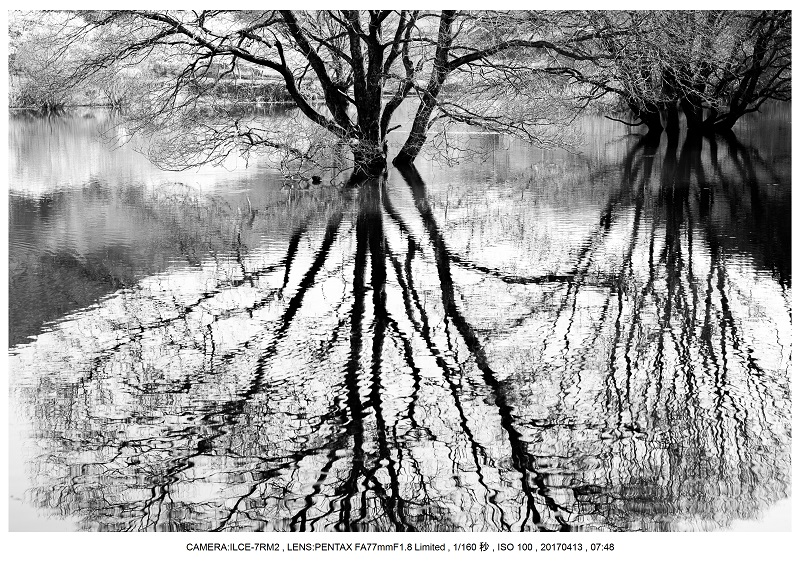 奈良・宇陀の室生湖2.jpg