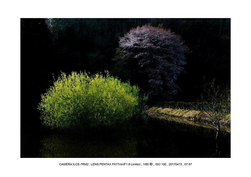 奈良・宇陀の室生湖7.jpg