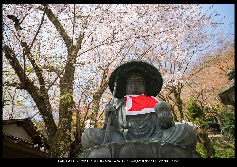 奈良・桜満開の長谷寺な旅行記・画像14.jpg