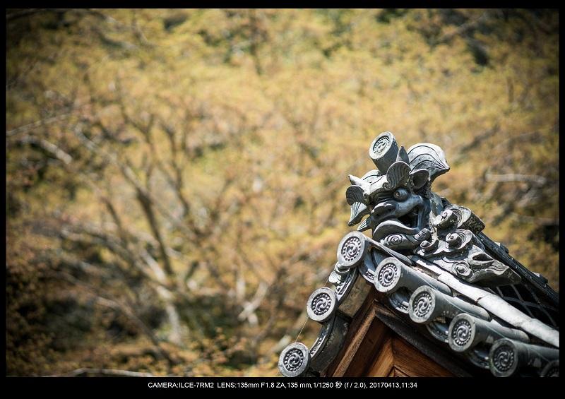 奈良・桜満開の長谷寺な旅行記・画像17.jpg