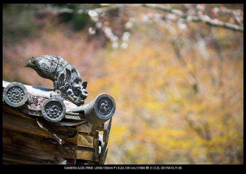 奈良・桜満開の長谷寺な旅行記・画像18.jpg