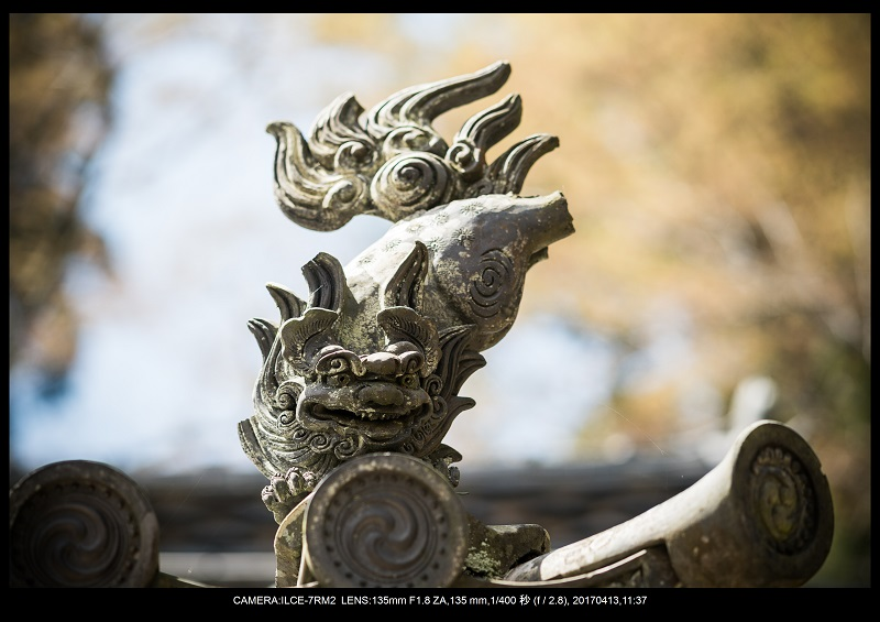 奈良・桜満開の長谷寺な旅行記・画像19.jpg