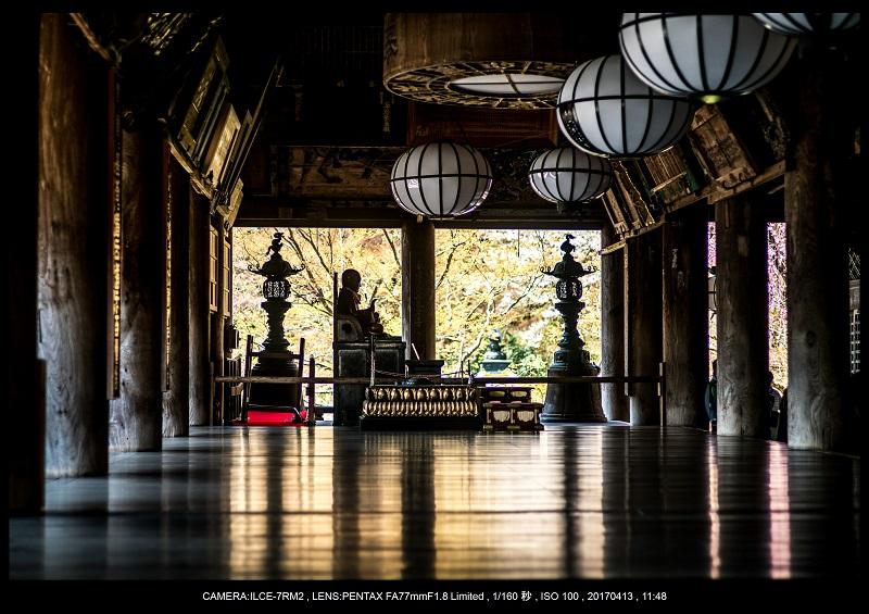 奈良・桜満開の長谷寺な旅行記・画像26.jpg