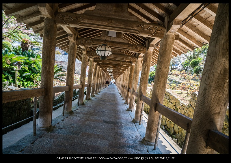 奈良・桜満開の長谷寺な旅行記・画像27.jpg