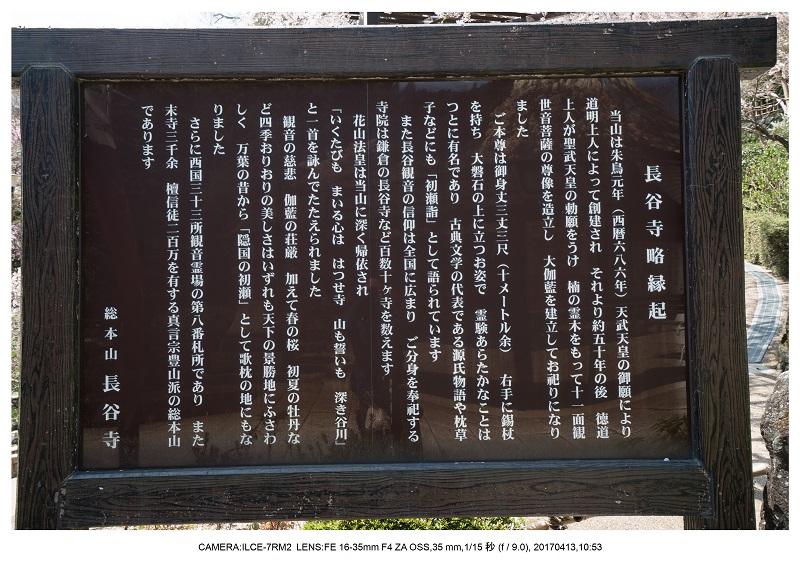 奈良・桜満開の長谷寺な旅行記・画像3.jpg
