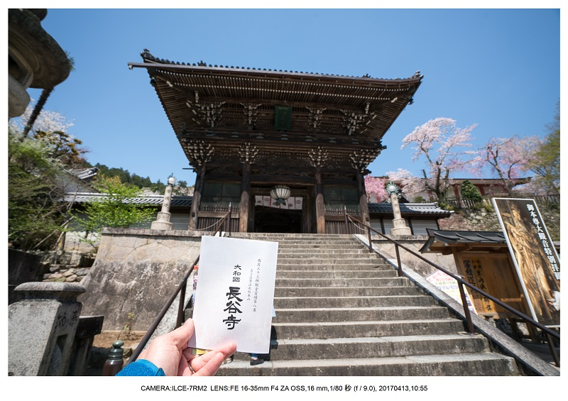 奈良・桜満開の長谷寺な旅行記・画像4.jpg