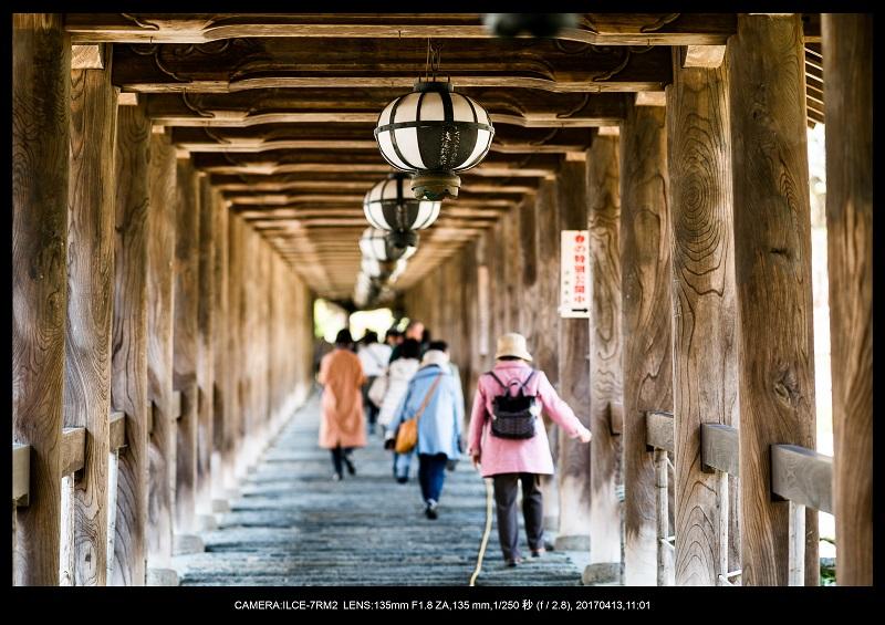 奈良・桜満開の長谷寺な旅行記・画像5.jpg